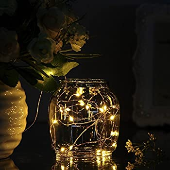 7ft/2M 20 LED AA Battery Operated Powered Copper Wire LED Fairy Strings Lights-Warm White(Batteries are NOT included)