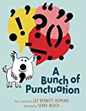 img - for A Bunch of Punctuation book / textbook / text book