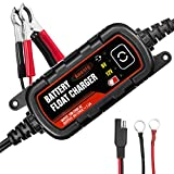 Anesty 6V and 12V 1.5A Waterproof Battery Charger/Maintainer with Alligator Clip and Ring Terminal, Used for Cars, Motorcycles, Boats, Scooters, Farm Machineries, RVs