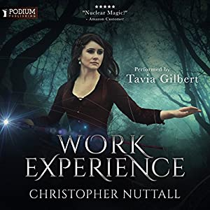 Work Experience Audiobook