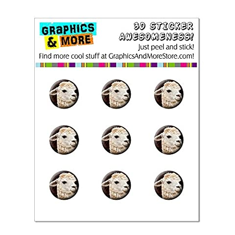 White Llama Home Button Stickers Fit Apple iPhone (3G, 3GS, 4, 4S, 5, 5C, 5S), iPad (1, 2, 3, 4, mini), iPod Touch (1, 2, 3, 4, (Ipod 5 Llama Case)