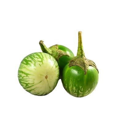 MABES WAREHOUSE Thai Round Eggplant 30 Seeds - Solanum Melongena Plant Seeds, Mini Aubergine/Brinjal Plants Garden Seeds, Thai Eggplant Seeds for Planting, Vegetable Seeds for Planting Home Garden : Garden & Outdoor [5Bkhe1902199]