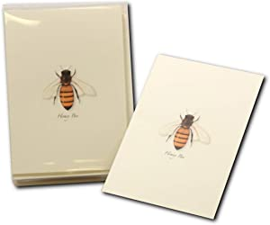 Earth Sky + Water - Honey Bee Notecard Set - 8 Blank Cards with Envelopes