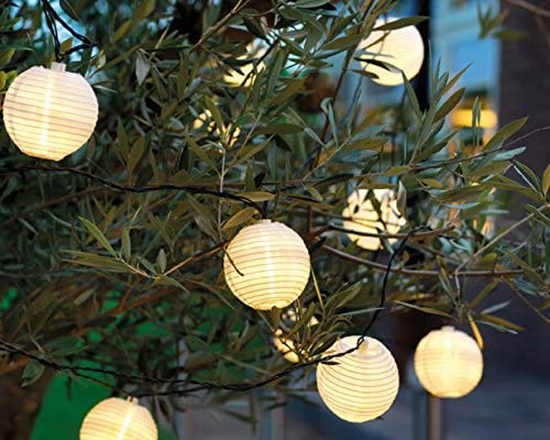 Time for Home LED Cadena de luz (20