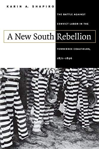 A New South Rebellion: The Battle against Convict Labor in the Tennessee Coalfields, 1871-1896 (Fred W. Morrison Series in Southern Studies) (Best Economy In North America)