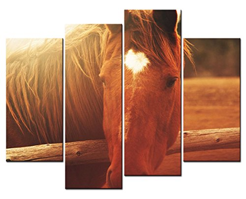 - SmartWallArt - Animal Paintings Wall Art a Reddish Brown Horse with Heart-shaped White Hairs on It Face 4 Panel Picture Print on Canvas for Modern Home Decoration
