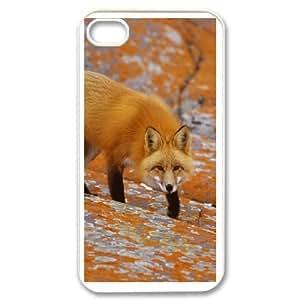 iPhone 4,4S Csaes phone Case Fox FKS92886