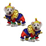 Dog Costume Shiny Clown Costumes Dogs As Colorful Circus Clowns
