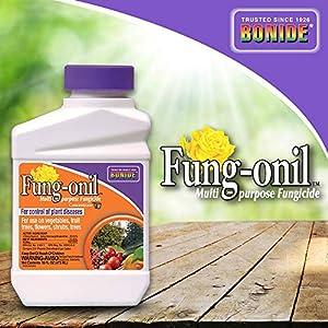 Bonide (BND880) - Fungal Disease Control, Fung-onil Multi-Purpose Fungicide Concentrate (16 oz.)