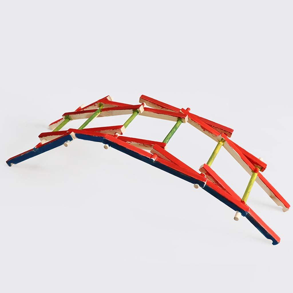 jiheousty Madera DIY Bailey Bridge Kits de construcción Modelos de ensamblaje Física Experimento Ciencia Niños DIY Juguetes educativos: Amazon.es: Hogar