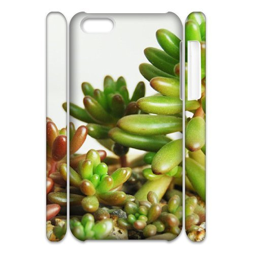 SYYCH Phone case Of Succulent Plants Cover Case For Iphone 5C