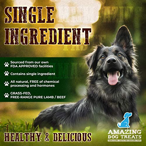 Backstrap 6 Inch Tendon Chew (10 Pack) - Pure 100% Beef Tendon Dog Treat - Long Lasting Dog Chew (10 Pack)