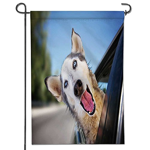 AmaPark Yard outdoor home decor-a funny husky wolf mix with