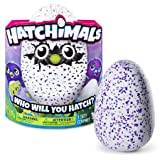 Hatchimals Draggle, Blue/Purple Egg