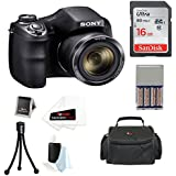 Sony DSC-H300/B Digital Camera with Rechargeable NiMH AA Batteries and 16GB SDHC Accessory Bundle (Black)