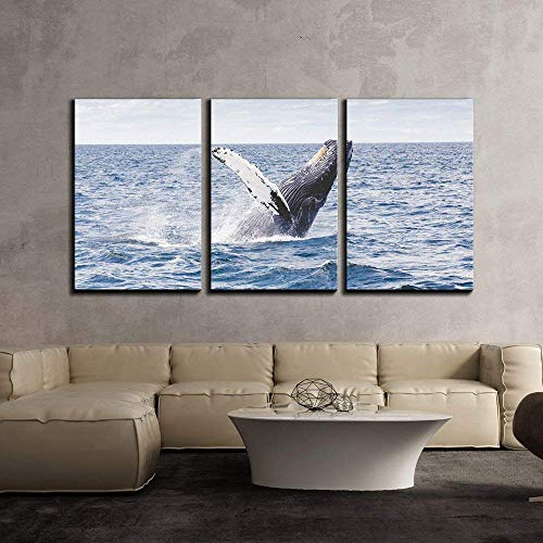 - Anzona 3 Panel Canvas Wall Art Paintings, Jumping Whale, Modern Home Decor Stretched and Framed Ready to Hang Wall Decor, 24''x28''x3 Panels