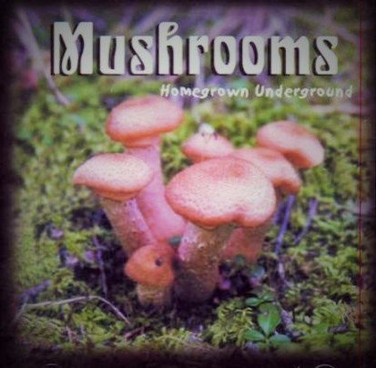 Mushroom Homegrown - Homegrown Underground