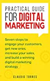 Practical Guide for Digital Marketing: Seven steps to engage your customers, get new ones, increase your sales, and build a winning digital marketing strategy