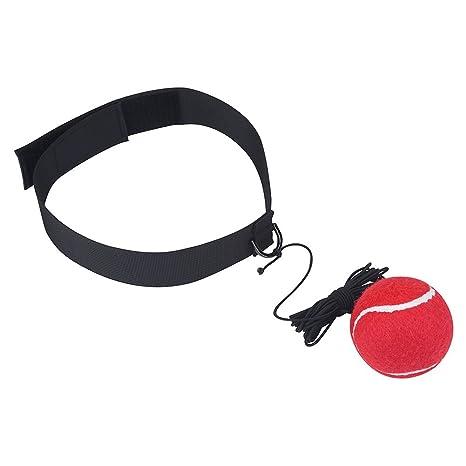 Boxeo Lucha Formación balón Reflex brazo fuerza equilibrio ...