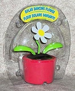 Sconosciuto Solar Dancing Flower (Bubble pacchetto)–Red pot