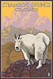 Steamboat Springs, Colorado - Mountain Goat (9x12 Art Print, Wall Decor Travel Poster)