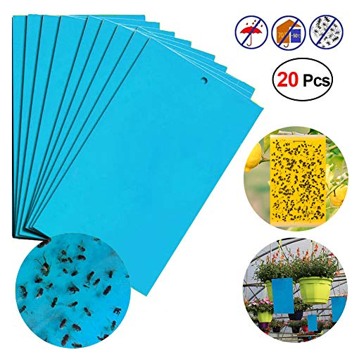 Moonase 20 Pack Dual-Sided Yellow Sticky Traps for Flying Plant Insect Such as Fungus Gnats, Whiteflies, Aphids, Leafminers,Best Trap (20pcs,Blue)