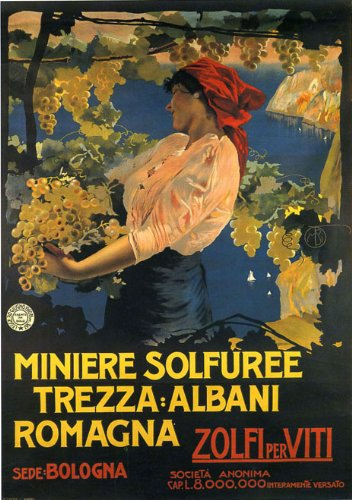 Bologna Italy Pretty Girl with Grapes Poster
