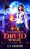 Druid Magic (Druid Academy Book 1)