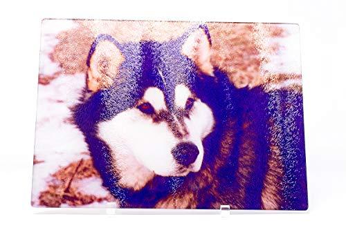 Malamute Sled Dog Glass Cutting Board, 15