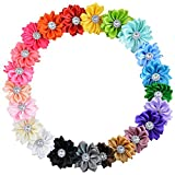 Deercon Newborn Baby Girl Clips Barrettes Crystal Flower DIY Hair Bow (22 colors Pack)