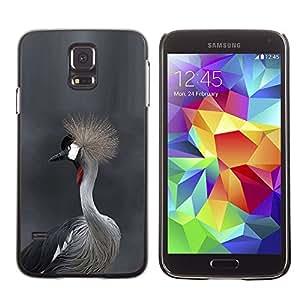Caucho caso de Shell duro de la cubierta de accesorios de protección BY RAYDREAMMM - Samsung Galaxy S5 SM-G900 - Grey Hair Head Nature Gray