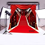 LB 10x10ft Red Carpet Vinyl Photography Backdrop Customized Photo Background Studio Prop VD442