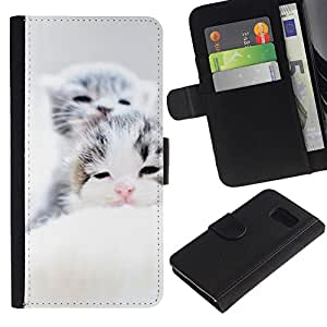 Billetera de Cuero Caso Titular de la tarjeta Carcasa Funda para Samsung Galaxy S6 SM-G920 / Baby Kittens Sleepy Cute Grey Tiny / STRONG