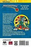 MegaMan NT Warrior, Vol. 12 (v. 12)