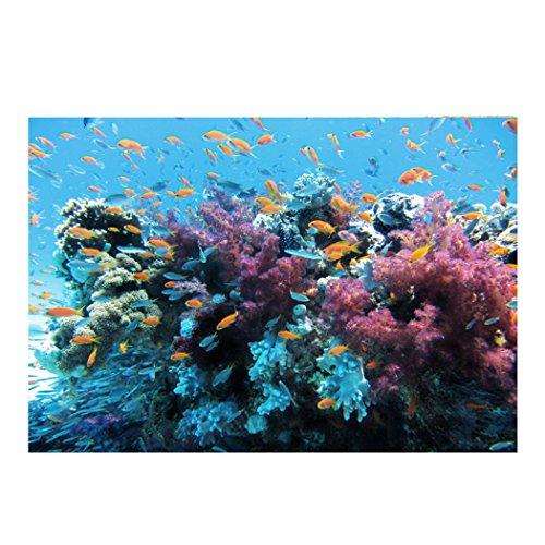 "BMALL Aquarium Background Fish Tank Sticker Undersea World PVC Aquarium Decorative Paper 24""x11.8"""