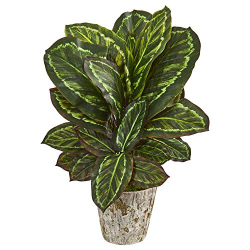 Nearly Natural 8427 26-in. Maranta Artificial Weathered Oak Planter Silk Plants Green