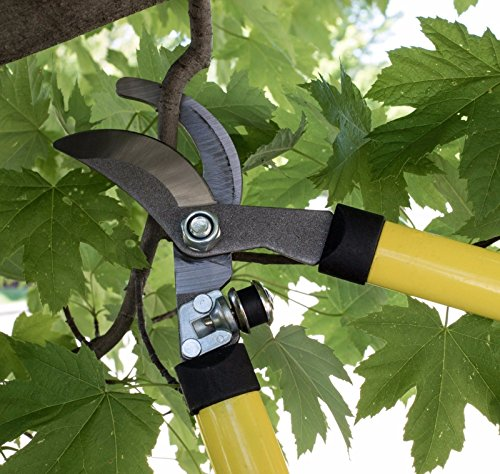 27'' Steel Bypass Lopper Tree Pruning Shears Yard Trimming Cutter and Pruner by Lotus Analin (Image #1)