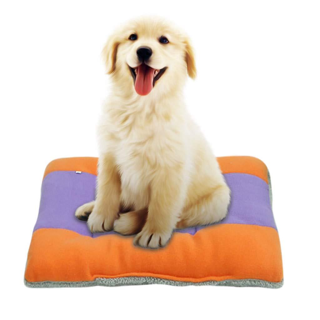 BEAUTYVAN Pet Bed,Dog Cat Bed Dog Mat Cushion Waterproof for Crate Outdoor Car Mat Mattress Pets Kennel Pads (2XL, Orange) by BEAUTYVAN