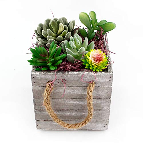 Planter Boxes Diy (DIY Faux Succulent Planter Kit - Artificial Succulents with Moss and Accessories in 4.75 Inch Wooden Box)