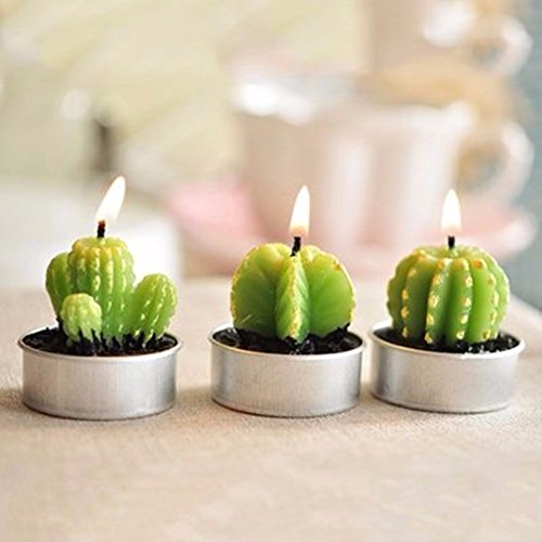 6PCS/Set Home Decor Rare Mini Cactus Candle Table Tea Light Home Garden Simulation Plant Candle Decorative Wedding Candles