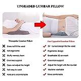 Idle Hippo Lumbar Pillow for Sleeping, Adjustable
