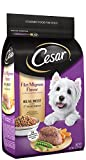 Cesar Filet Mignon Flavor With Spring Vegetables Dry Small Breed Dog Food5 Pounds