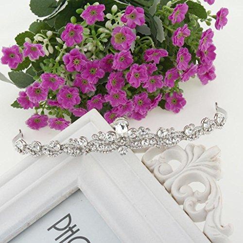 Ever Faith - Cristal Autrichien mariage Diadèmes Bandeaux Plaqué Argent N03998-1