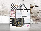 Best Bags For Clothes - Wall Art Chanel Bag Print Poster - Pop Review