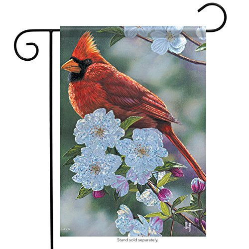 Carson Home Accents Trends Glitter Garden Flag, Springtime Cardinal