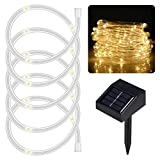 lychee 16.5ft 50LED Waterproof Solar Power String 1.2 V, Daylight White Light Sensor, Outdoor Rope Lights, Ideal Christmas, Party, Wedding (Warm White)