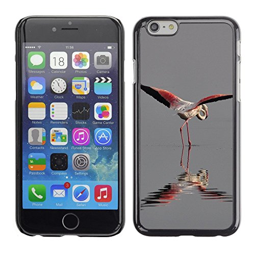 Premio Sottile Slim Cassa Custodia Case Cover Shell // F00000015 camarguefrance nature // Apple iPhone 6 6S 6G PLUS 5.5""