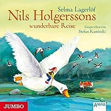 Nils Holgerssons wunderbare Reise Hörbuch von Selma Lagerlöf Gesprochen von: Stefan Kaminski