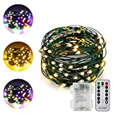 ER CHEN Dual-Color LED String Lights(Multicolored/warm white), 33FT 100LEDs Battery Powered Color Changing Green Copper Wire Dimmable Decorative Lights with 8 Mode Remote Control Timer for indoor and outdoor party Christmas wedding