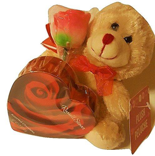 bear-teacher-appreciation-bundle
